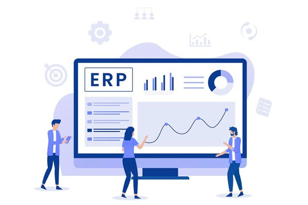 Erp & Software Development